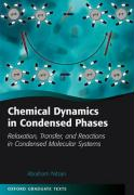 Chemical Dynamics in Condensed Phases: Relaxation, Transfer, and Reactions in Condensed Molecular Systems