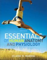 Essentials of Human Anatomy and Physiology [With DVD ROM]