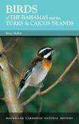 Birds of the Bahamas and the Turks and Caicos Islands