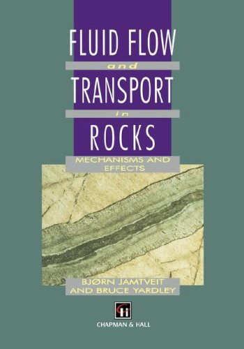 Fluid Flow and Transport in Rocks: Mechanisms and effects - B. Jamtveit; Bruce Yardley