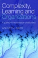 Complexity, Learning and Organizations: A Quantum Interpretation of Business