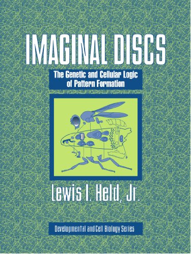 Imaginal Discs: The Genetic and Cellular Logic of Pattern Formation (Developmental and Cell Biology Series) - Lewis I. Held Jr