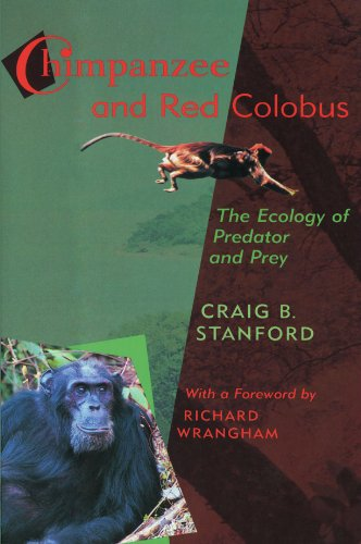 Chimpanzee and Red Colobus: The Ecology of Predator and Prey, With a Foreword by Richard Wrangham - Craig B. Stanford; Richard W. Wrangham