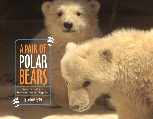 A Pair of Polar Bears: Twin Cubs Find a Home at the San Diego Zoo - Joanne Ryder