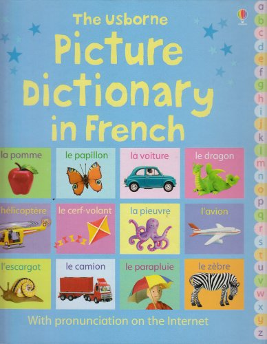 Picture Dictionary In French - Felicity Brooks; Mairi Mackinnon