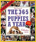 The 365 Puppies-a-Year 2013 Wall Calendar