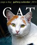 Cat Page-A-Day Gallery Calendar 2014