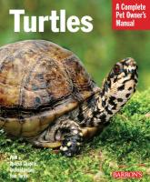 Turtles: Everything about Purchase, Care, and Nutrition