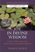 Joy in Divine Wisdom: Practices of Discernment from Other Cultures and Christian Traditions