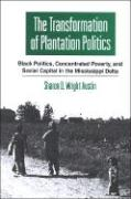 The Transformation of Plantation Politics: Black Politics, Concentrated Poverty, and Social Capital in the Missippi Delta