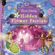 Hidden Flower Fairies (Flower Fairies Novelty Book)