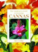 Gardener's Guide to Growing Cannas