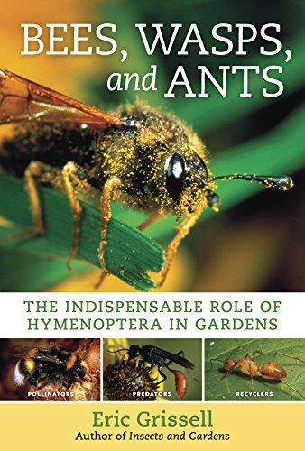 Bees, Wasps, and Ants: The Indispensable Role of Hymenoptera in Gardens - Eric Grissell