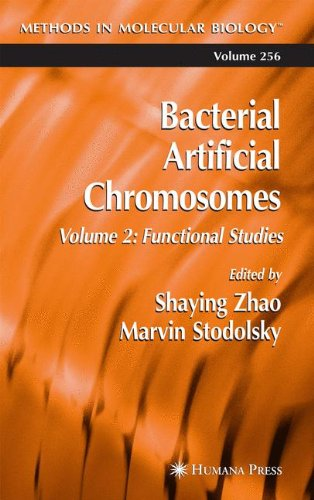 Bacterial Artificial Chromosomes: Volume 2: Functional Studies (Methods in Molecular Biology) - Shaying Zhao; Marvin Stodolsky