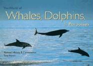 The World of Whales, Dolphins & Porpoises: Natural History & Conservation