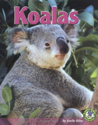 Koalas (Early Bird Nature Books) - Joelle Riley