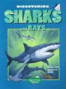 Discovering Sharks and Rays [With Stickers]