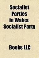 Socialist Parties in Wales: Socialist Party