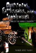 Duststorms, Rattlesnakes, and Tumbleweeds: Short Stories of the Human Condition