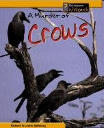 A Murder of Crows (Sandcastle Animal Groups) - Richard Spilsbury; Louise Splisbury; Louise A. Spilsbury