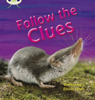 Phonics Bug Follow the Clues Phase 5