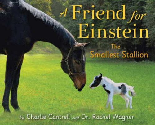 A Friend for Einstein, the Smallest Stallion - Charlie Cantrell, Dr. Rachel Wagner
