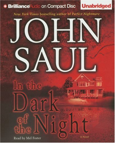 In the Dark of the Night - John Saul