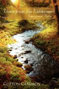 Voice from the Wilderness: Inspirational Poetry