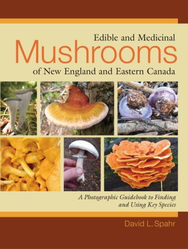Edible and Medicinal Mushrooms of New England and Eastern Canada - David L. Spahr