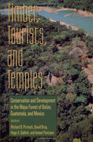 Timber, Tourists, and Temples: Conservation And Development In The Maya Forest Of Belize Guatemala And Mexico - Richard B. Primack; David Bray; Hugo A. Galletti; Ismael Ponciano