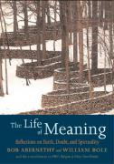 The Life of Meaning: Reflections on Faith, Doubt, and Repairing the World