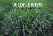 Wildflowers and Other Plants of Iowa Wetlands