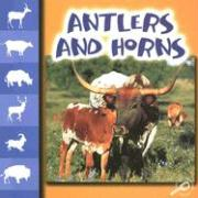 Antlers and Horns