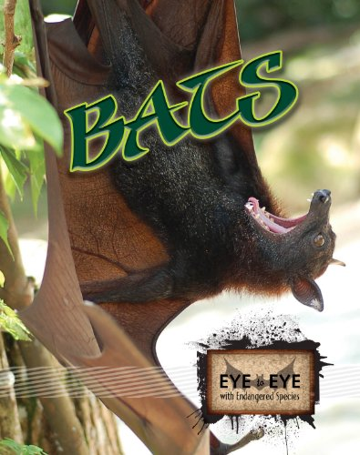 Bats (Eye to Eye with Endangered Species) - Cindy Rodriguez