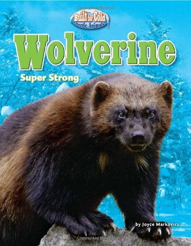 Wolverine: Super Strong (Built for the Cold: Arctic Animals) - Joyce Markovics