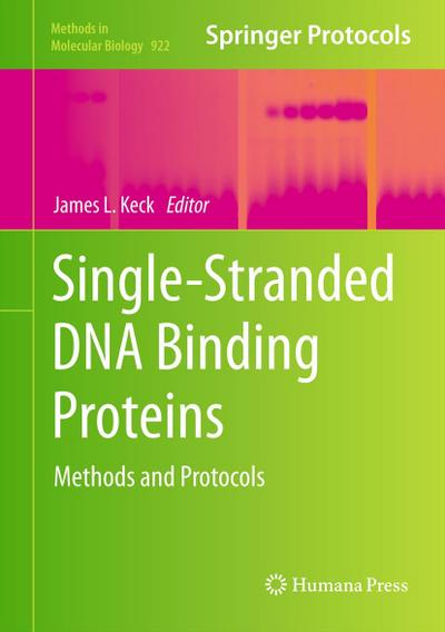 Single-Stranded DNA Binding Proteins - James L. Keck