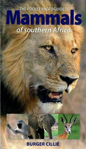 Pocket Photoguide to Mammals of Southern Africa: 4th Edition - Burger Cillie