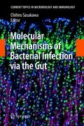 Molecular Mechanisms of Bacterial Infection via the Gut