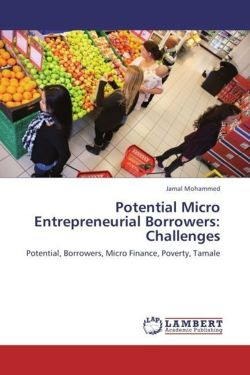 Potential Micro Entrepreneurial Borrowers: Challenges - Mohammed, Jamal