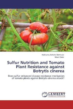 Sulfur Nutrition and Tomato Plant Resistance against Botrytis cinerea