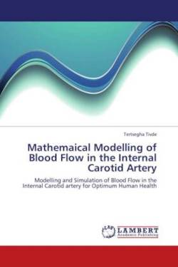 Mathemaical Modelling of Blood Flow in the Internal Carotid Artery - Tivde, Tertsegha