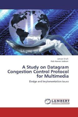 A Study on Datagram Congestion Control Protocol for Multimedia