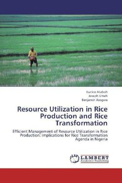 Resource Utilization in Rice Production and Rice Transformation