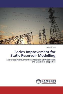 Facies Improvement for Static Reservoir Modelling: Log facies improvement by integrating Petrophysical and Elatic rock properties