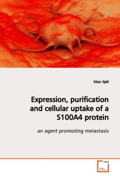 Expression, purification and cellular uptake of a S100A4 protein - stian sjøli
