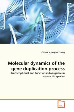 Molecular dynamics of the gene duplication process - Zhang, Clarence Kangyu