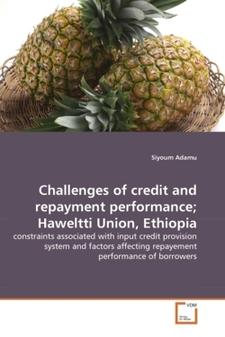 Challenges of credit and repayment performance; Haweltti Union, Ethiopia - Adamu, Siyoum