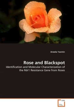 Rose and Blackspot - Yasmin, Aneela