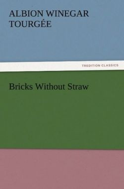 Bricks Without Straw - Tourgée, Albion Winegar