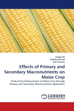 Effects of Primary and Secondary Macronutrients on Maize Crop - Ali, Amjed / Ahmad, Ashfaq / Hussain, Arif
